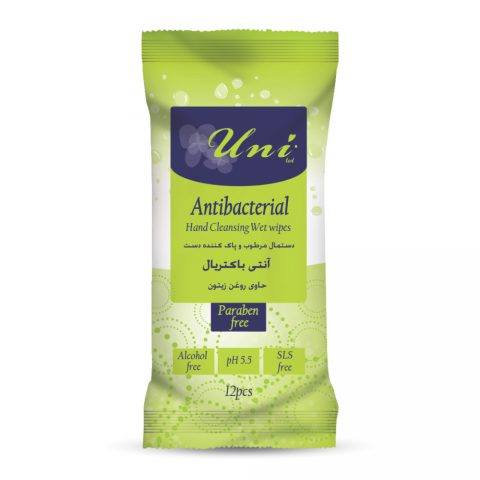 Antibacterial Hand Cleansing Wet Wipes 12 pcs-Uni